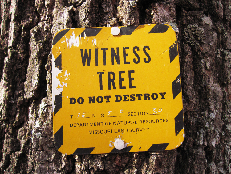 missouri witness tree sign