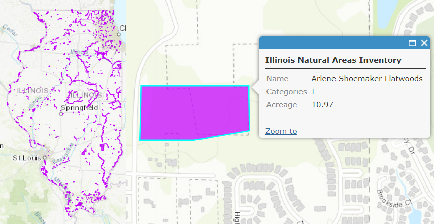 Illinois Natural Areas Inventory Sites, Arlene Shoemaker Flatwoods
